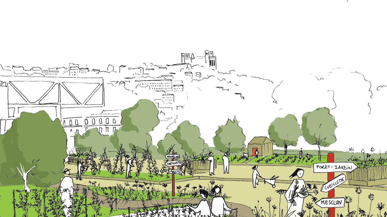 Bureau d'étude agriculture urbaine projet