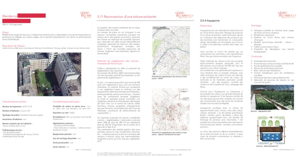 Plan stratégique agriculture urbaine SACVL